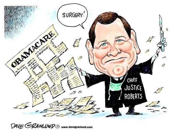 Roberts Obamacare Surgeon
